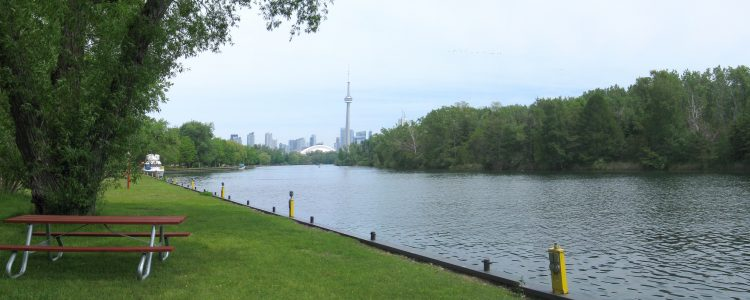 Green space in Toronto by the river