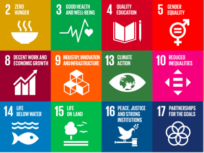 UN Sustainable Development Goals: How Does Ontario Measure Up?