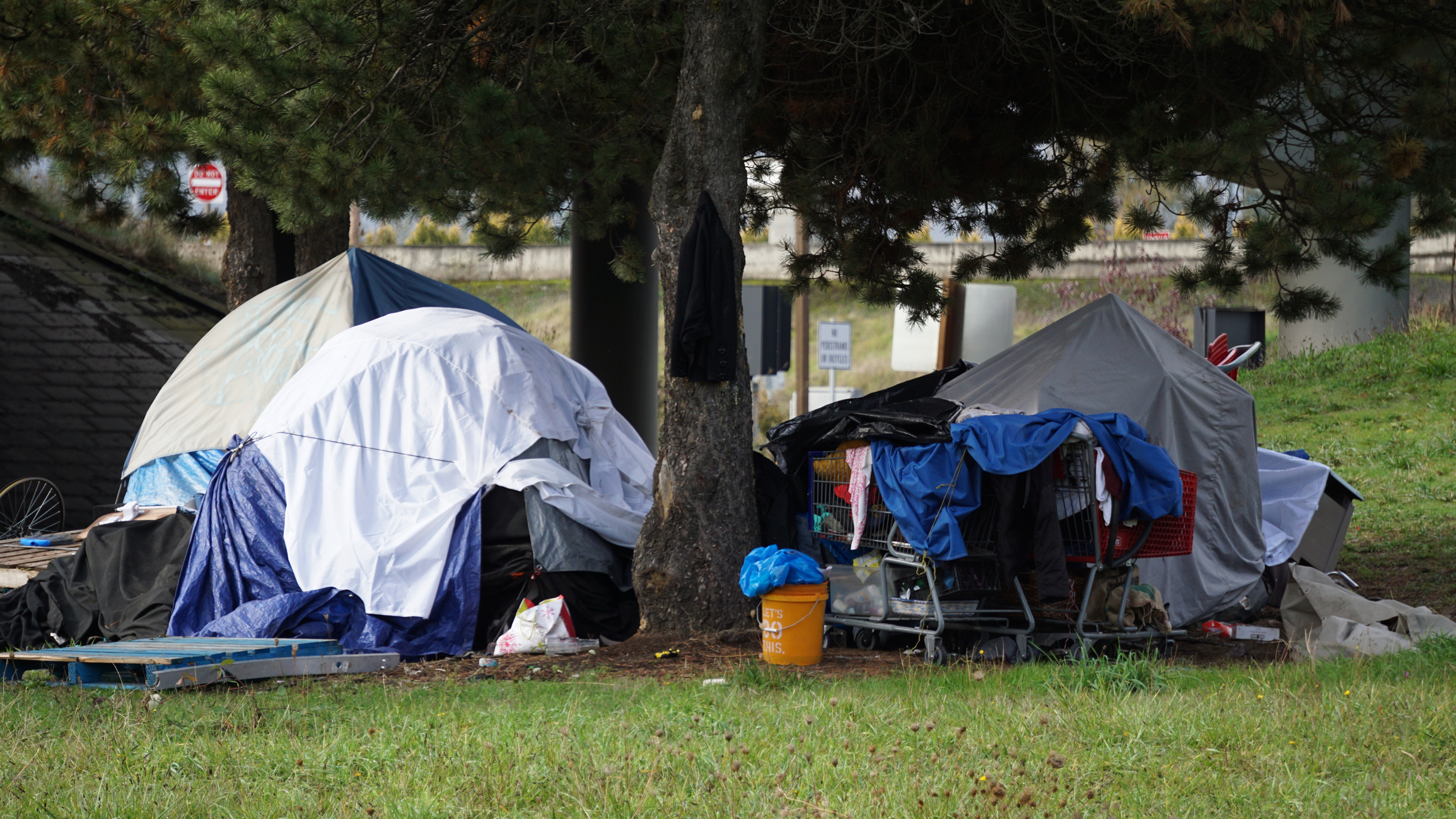 Homeless tent camp in the park